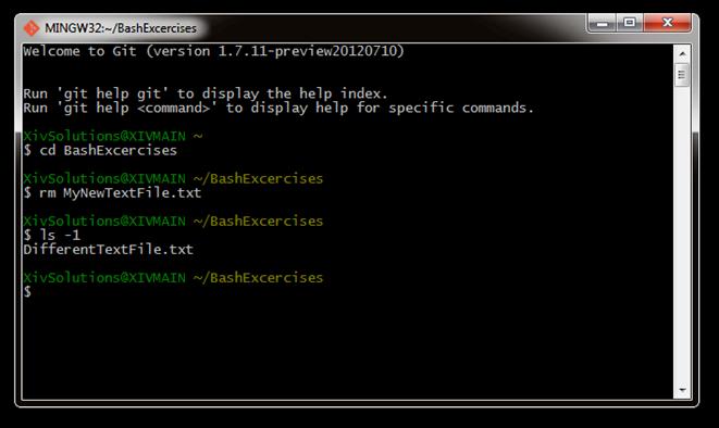 Bash-Remove-Text-File