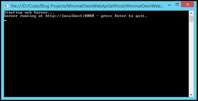 run-web-api-application